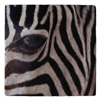 Personalized Zebra Trivet