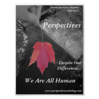 Perspectives Poster