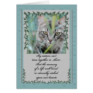 Perte de sympathie d'animal familier de chat tigré carte de vœux