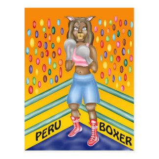 Peru boxer, alpaca character design postcard