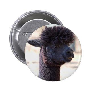 Peruvian Alpaca With Crazy Hair 2 Pin