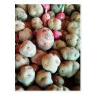 Peruvian Potatoes Postcard