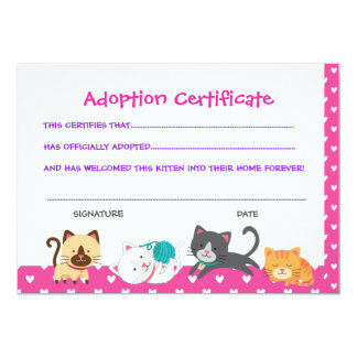 Pet adoption certificate, Kitten Birthday Card