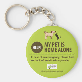 Pet Alert Keychain | Help! My pet is home alone!
