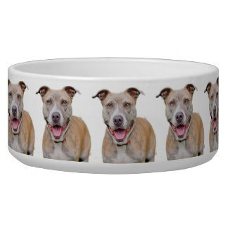 Pet Bowl/Pitbull Pet Water Bowl