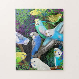 Pet Budgerigars in Ferns Puzzle