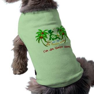 Pet clothes, Clothes for pets