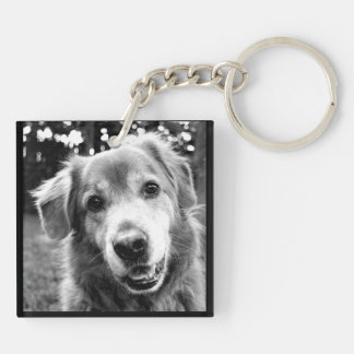 Pet Collection - The Many Faces of Dogs Keychain