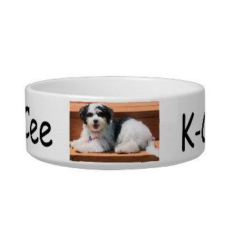 Pet Dish Medium, Dog K-Cee