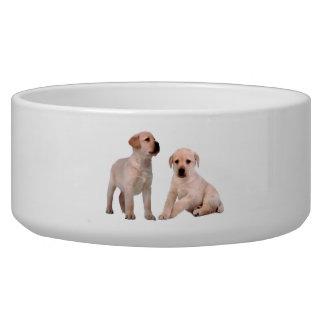 Pet Dog image for Large Pet Bowl