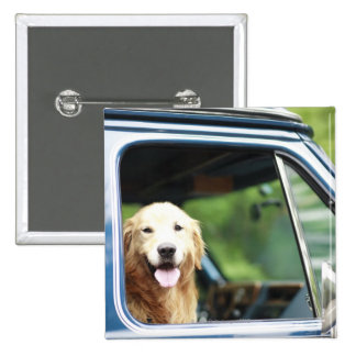 Pet dog sitting in a car 2 inch square button