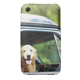 Pet dog sitting in a car iPhone 3 cases