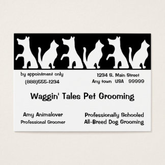 Pet Grooming Business And Appointment Card