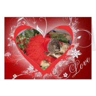Pet groundhog, Maude, Valentine's Day card