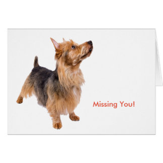 Pet image for Greeting card
