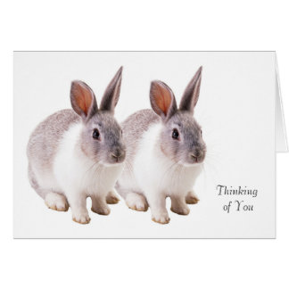 Pet image for Greeting-Card Card