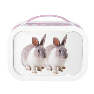 Pet image for Yubo-Lunch-box-Pink Lunch Box