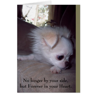 Pet Loss Sympathy Card for Dogs