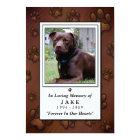 "Pet Memorial Card 3.5""x5"" - Chocolate Brown Photo"