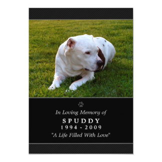 Pet Memorial Card 5 x 7 Black Photo Pet's Prayer