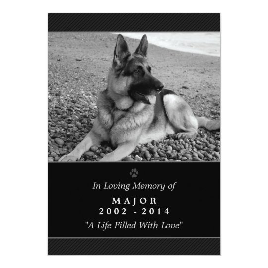 Pet Memorial Card 5x7 Black Rainbow Bridge Female