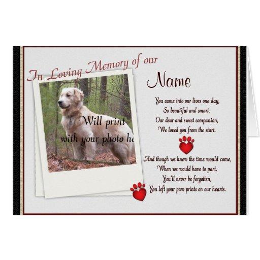 Pet Memorial Paw Prints  Announcement - Dog Cat Greeting Card