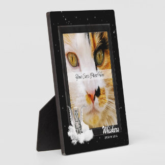Pet Memorial Tabby Cat Silver Stripes Photo Plaque