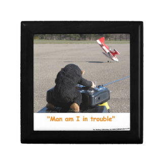 Pet Monkey Crashing Dads RC Plane Gift Box
