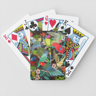 Pet Parrots of the Wold II Playing Cards