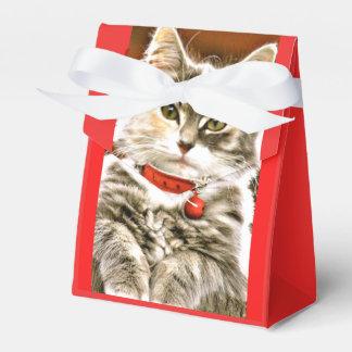 PET PARTY SWEET KITTEN FUN FAVOR BOX