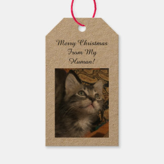 Pet Photo Gift Tags