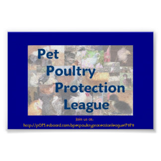 Pet Poultry Protection League Poster