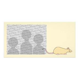 Pet Rat. Fawn. Picture Card