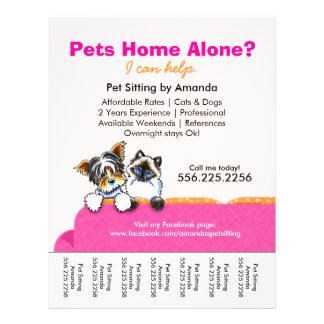 Pet Sitter Ad Yorkie Cat Couch Pink Tear Sheet