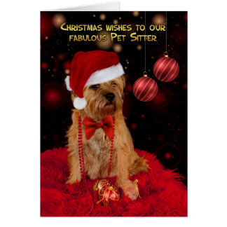 Pet Sitter Border Terrier Dog In A Santa Hat Card