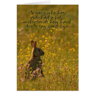 Pet Sympathy Card - Loss Of Pet Rabbit
