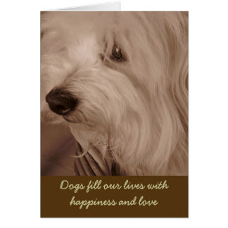 Pet Sympathy Card--Sepia White Dog Card