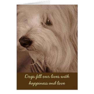 Pet Sympathy Card--Sepia White Dog Greeting Card