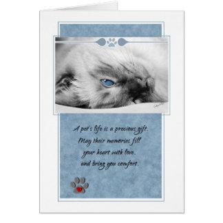 Pet Sympathy Loss of Cat Siamese Card