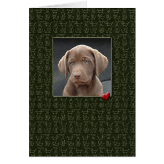 Pet Sympathy Loss of Dog Cards