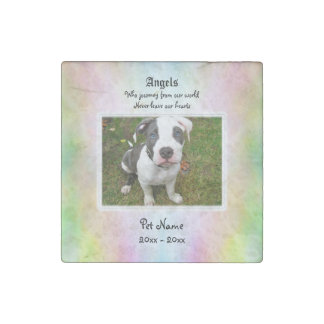 Pet Sympathy Stone Magnet Stone Magnets