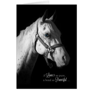 Pet Sympathy - White Horse on Black Card