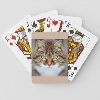 Pet Tabby Cat Poker Deck