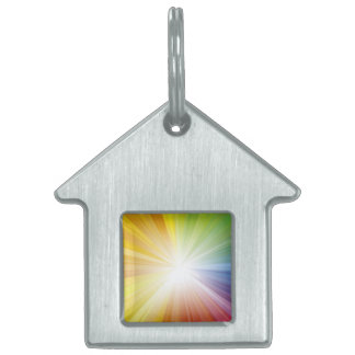 Pet Tag / Light of Jesus