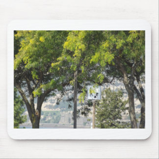 Pet Walk with Trees Mouse Pad