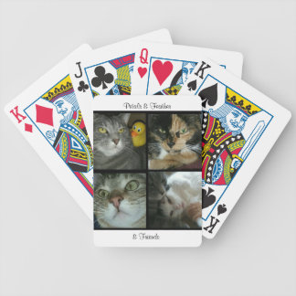 Petals & Feather & Friends playing cards