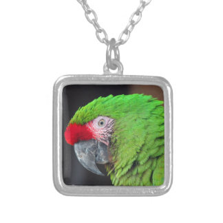 Pete Silver Plated Necklace