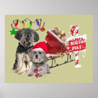 Petit Basset Griffon Vendeen North Pole Poster