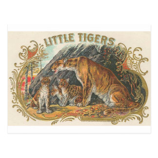 Petits tigres vintages carte postale