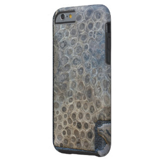 petoskey stone background tough iPhone 6 case